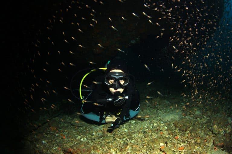 night-diving-in-cancun-768x512